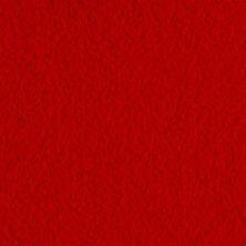 Fieltro 22x19x0,1 cm